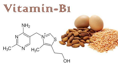 Vitamin B1 Information and Uses